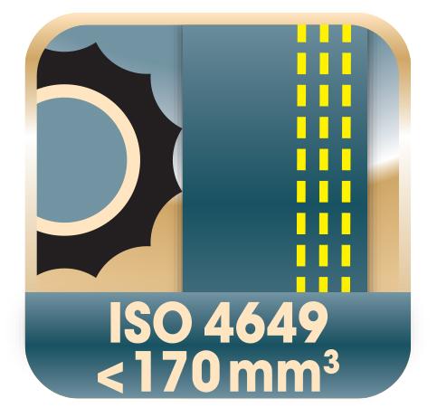 Picto_Sangle Anti Abrasive_ISO4649_170mm